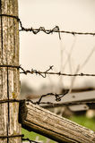 Barbed Wire Farm Fence. Barbed wire along fence line stock photography