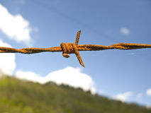 Barbed wire fence Stock Photography