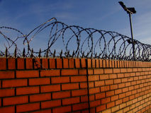 Barbed wire fence. On a brick wall Royalty Free Stock Photo