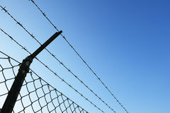 Barbed wire fence. Against blue sky Stock Photography