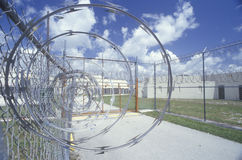 Barbed wire fence. At Dade County Men's Correctional Facility, FL Stock Photography