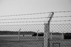 Barbed Wire Fence Royalty Free Stock Images