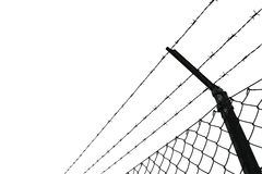 Barbed wire fence Stock Image