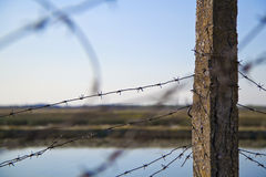 Barbed wire fence. Barbed wire coiled around a concrete column outdoors Royalty Free Stock Photos