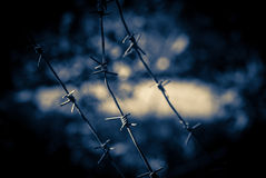 Barbed wire fence. Abstract background with barbwire. Stop zone on ghetto territory with wire barrier fence Royalty Free Stock Photography