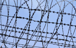 Barbed wire fence against blue sky background Royalty Free Stock Photo