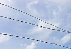 Barbed wire fence against a blue sky Stock Photography