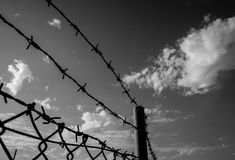 Barbed wire. A barbed wire fence against a cloudy sky in black and white Stock Image