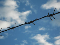 Barbed wire fence. Alone barbed wire fence on sky background Royalty Free Stock Photo
