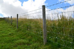 Barbed wire fence along meadow fields Stock Photography