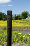 Barbed Wire Fence And Post Stock Photos