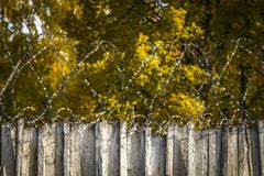Barbed wire on the fence. Area with restricted access Stock Photo