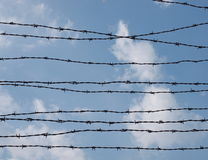 Barbed wire fence, Auschwitz Stock Photo