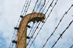 Barbed wire fence. In Auschwitz Birkenau Concentration Camp in Poland, (selective focus stock images