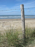 Barbed wire fence on the beach. One wooden pole that is part of a barbed wire fence on the beach. Green grass in the foreground and a blue sky Royalty Free Stock Photography