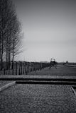 Barbed wire fence, Birkenau Concentration Camp, Poland Royalty Free Stock Photo