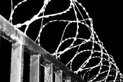 Barbed wire fence on a black background in night, prison, concept of salvation, Refugee, Silent, lonely, freedom royalty free stock photos