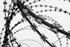 Barbed wire fence. black and white filter. Royalty Free Stock Image
