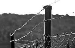 Barbed wire fence, green color, securing a site. Barbed wire fence, black and white, securing private property, background out of focus stock photos