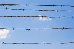 Barbed wire. Fence on blue sky background Royalty Free Stock Image