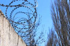 Barbed wire on fence with blue sky, the concept of prison, salvation, copy space. royalty free stock photography