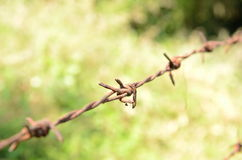 Barbed wire fence. The boundary fences of the individual taxpayer Stock Images