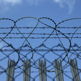 Barbed wire fence Royalty Free Stock Photos