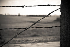 Barbed wire fence in concentration camp Stock Photo