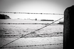 Barbed wire fence in concentration camp Stock Photos