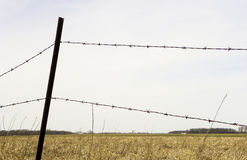 BARBED WIRE FENCE IN COUNTRY FIELD Royalty Free Stock Images