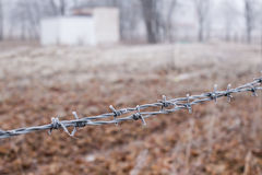 Barbed wire fence covered with hoarfrost Stock Image