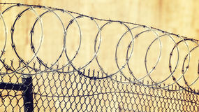 Barbed wire fence, crime and punishment concept. Royalty Free Stock Image