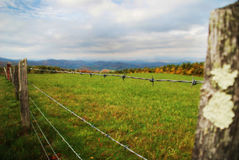 Barbed wire fence and field Royalty Free Stock Photo