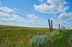 Barbed Wire Fence and Field. With blue sky and white clouds Royalty Free Stock Images