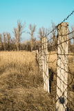 Barbed wire fence in a field Stock Photos