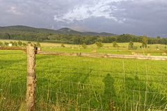 Barbed wire fence in the forefront of the frame with a wide green grassland beyond it Stock Photo