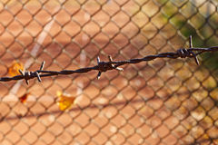Barbed wire fence in front of grid Stock Photography