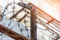 Barbed wire fence lack. Symbol of danger Stock Photo