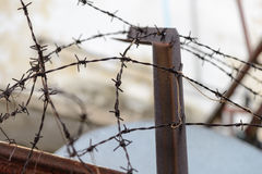 Barbed wire fence lack. Symbol of danger Royalty Free Stock Photography