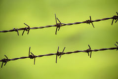 Barbed Wire Fence Royalty Free Stock Photo