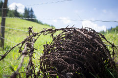 Barbed wire fence in a mountain meadow Stock Image