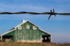 Barbed wire. Royalty Free Stock Photo