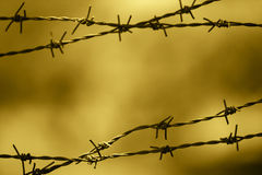 Barbed wire fence with out of focus background Stock Image