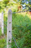 Barbed wire fence in overgrown plant Stock Photos