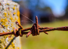 Barbed wire and fence post in front of field Stock Photography