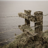 Barbed wire fence and posts, Norfolk Island. Old posts and barbed wire fence on the cliff top of Norfolk Island, Australia stock image