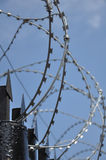 Barbed wire fence at the prison Royalty Free Stock Photos
