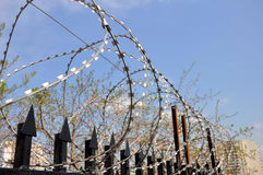Barbed wire fence at the prison. Penal Royalty Free Stock Images