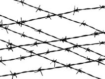 Barbed wire fence protection isolated on white. For background texture Royalty Free Stock Photography