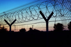 Barbed wire fence. Stock Image